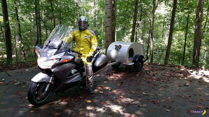 Мотоциклетный прицеп для собакена
