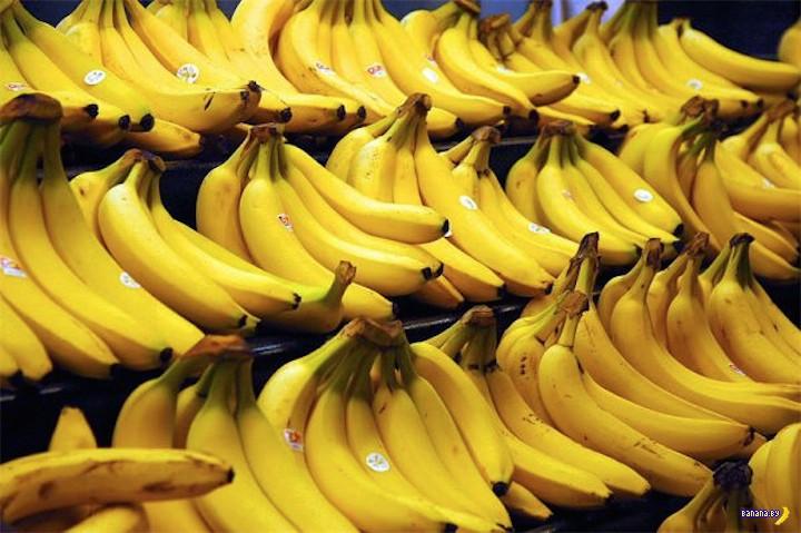 Интересное про бананы
