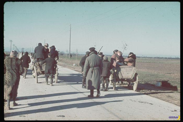 Оккупация Польши в 1939 году