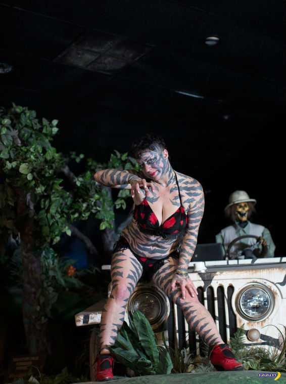 Дикая тигрица с американщины