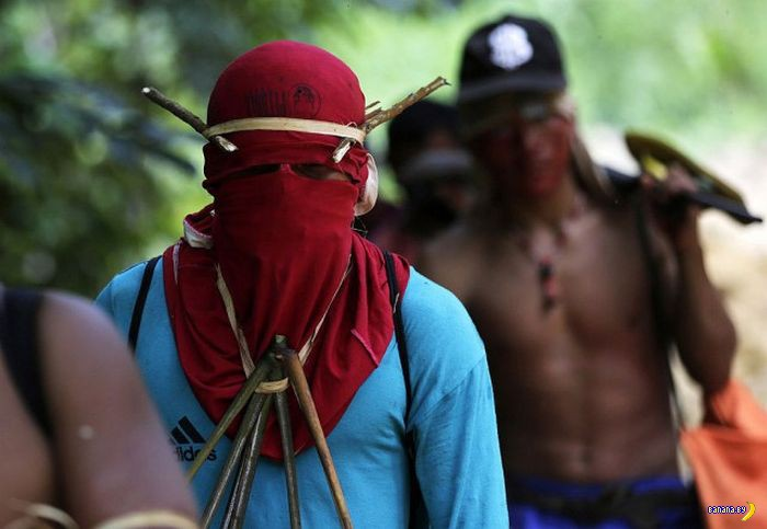 Майдан теперь и в джунглях