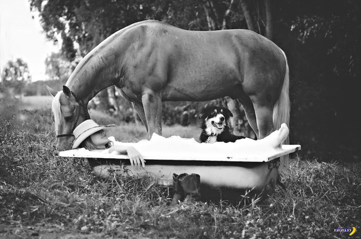 Голые ветеринары
