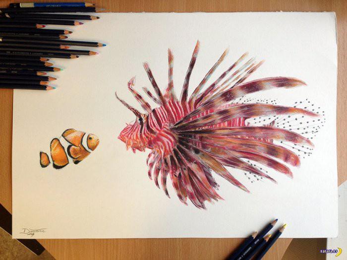 Рисует Дино Томич