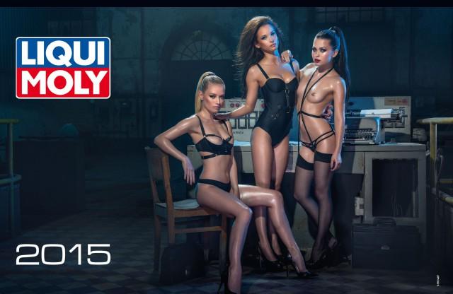 Календари 2015: Liqui Moly