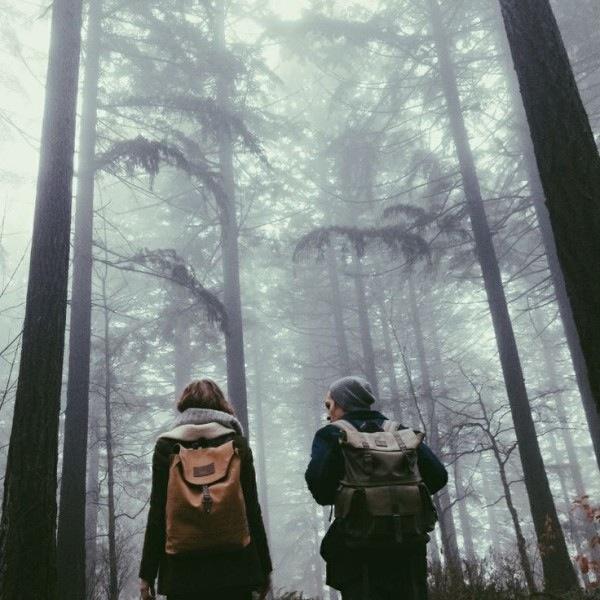 Россыпь красивых фотографий - 49