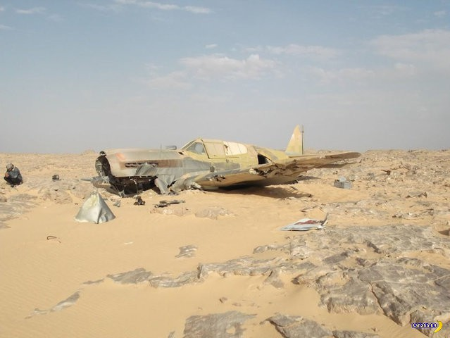 Находка в пустыне