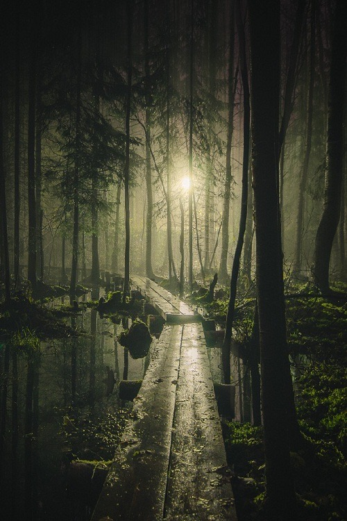 Россыпь красивых фотографий - 52