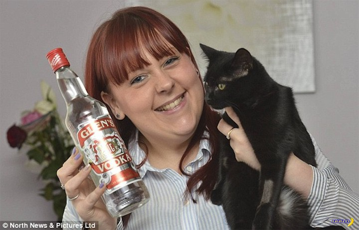 В кошку залили пол литра водки ради спасения