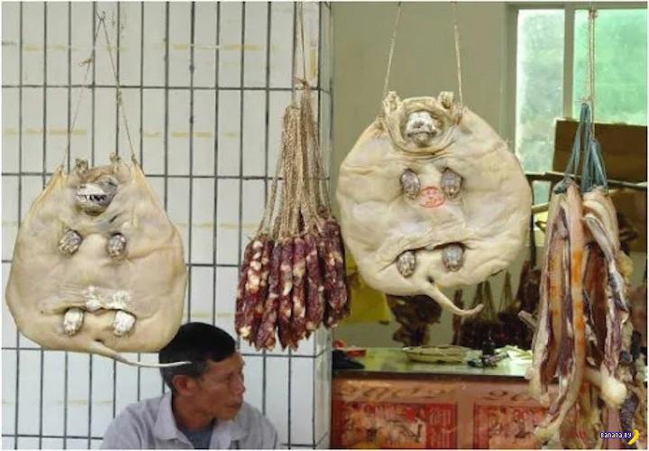 Немного про китайских расплющенных собак
