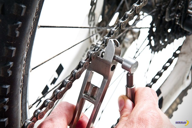 Nutter  - Набор мечты для велосипедиста