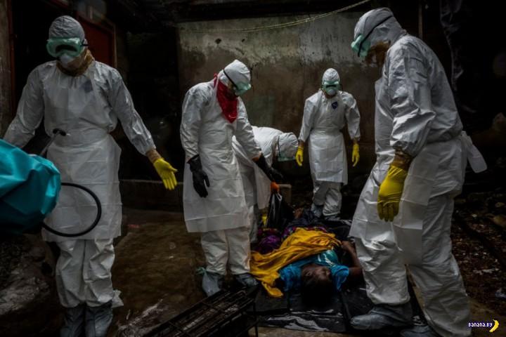 Эбола - хроника смерти