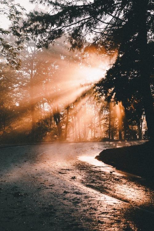 Россыпь красивых фотографий - 54
