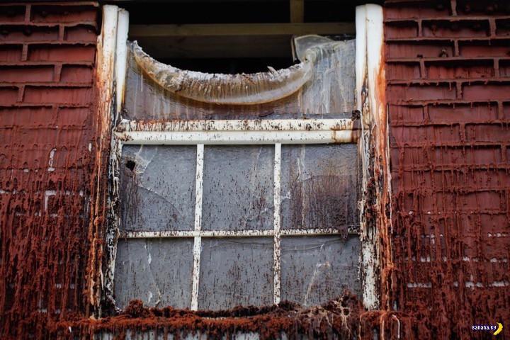 Дом из воска простоит 30 дней