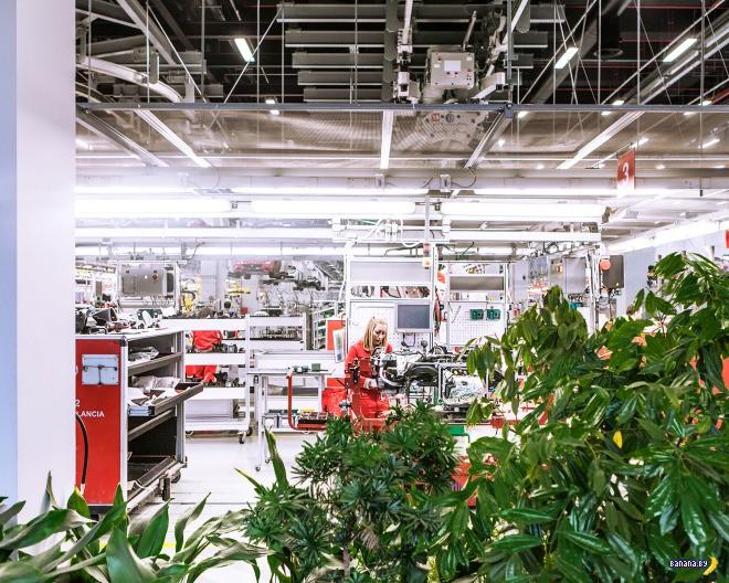 Экскурсия на завод Ferrari в Маранелло
