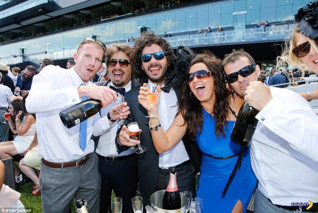 Пьяные поросятки на Кубке Мельбурна
