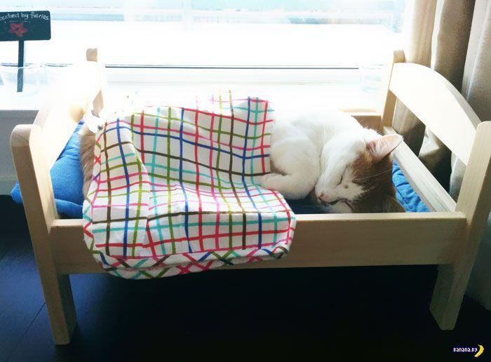 Новое применение кукольным кроватям из IKEA
