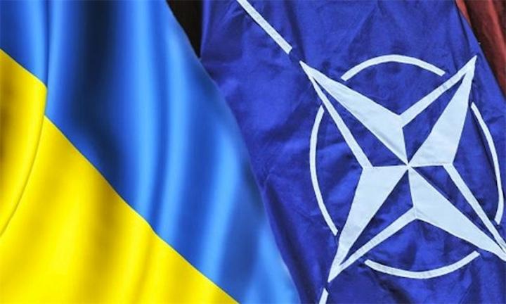 Порошенко проведет референдум о вступлении в НАТО