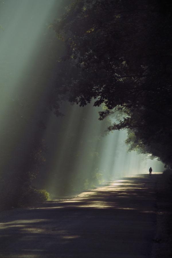 Россыпь красивых фотографий - 59