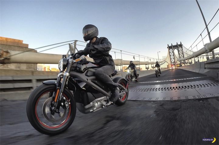Постыдный Harley-Davidson?