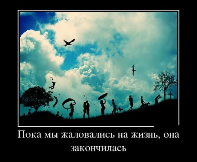 Демотиваторы - 348