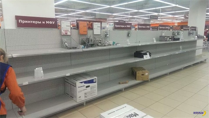 Белорусская саранча напала на Беларусь