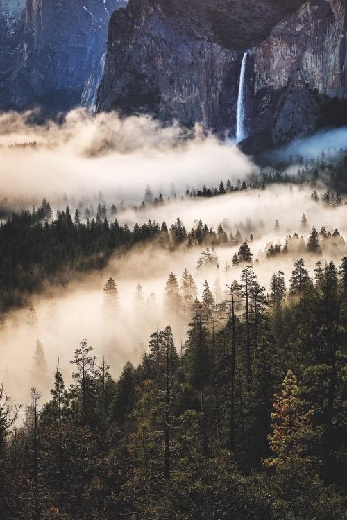 Россыпь красивых фотографий - 61