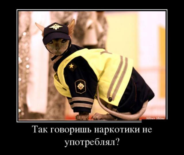 Демотиваторы - 358