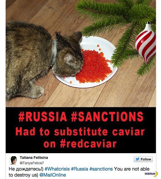 Россияне массово фотографируют икру против санкций