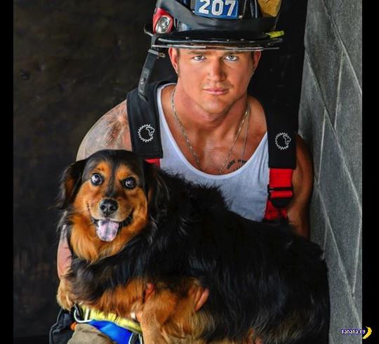 Календари 2015: Пожарные со щенками