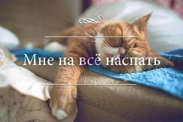 Анекдоты дня 05.01.2015