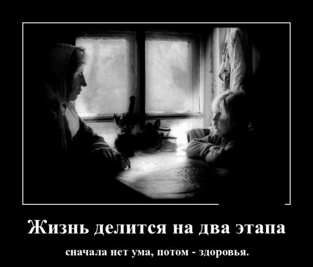������������ - 365