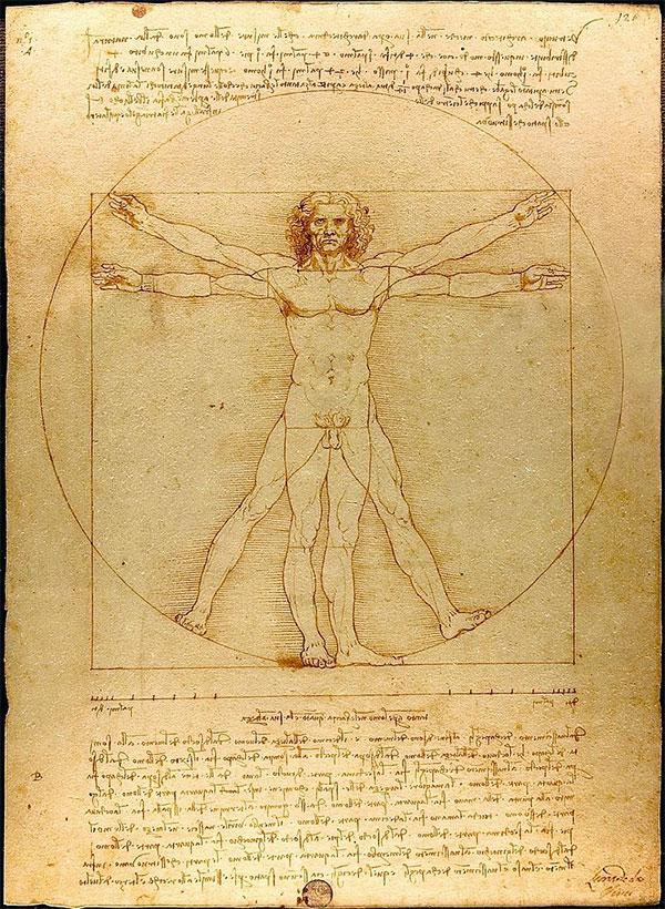 Почему у человека некоторые органы — парные?