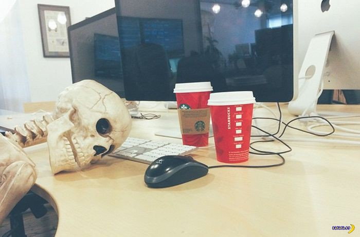 Скелет-пародист