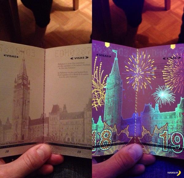 Веселый паспорт!