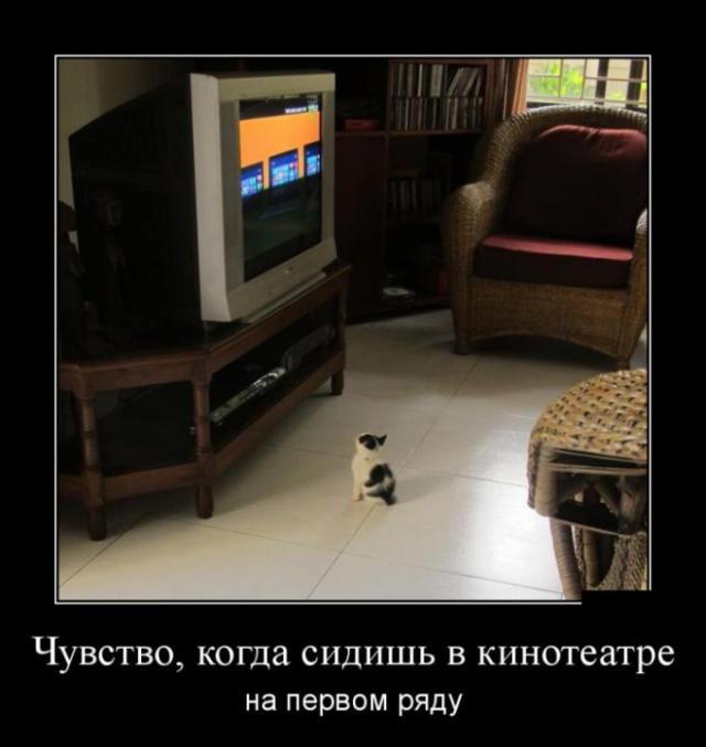 Демотиваторы - 373