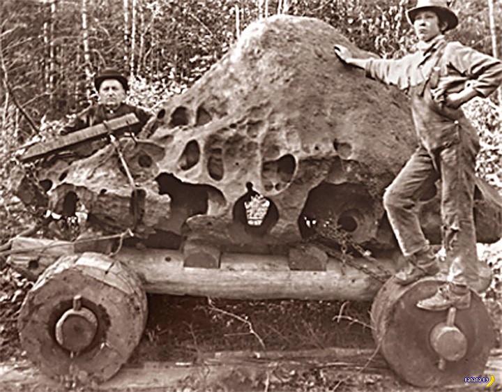 История одного метеорита