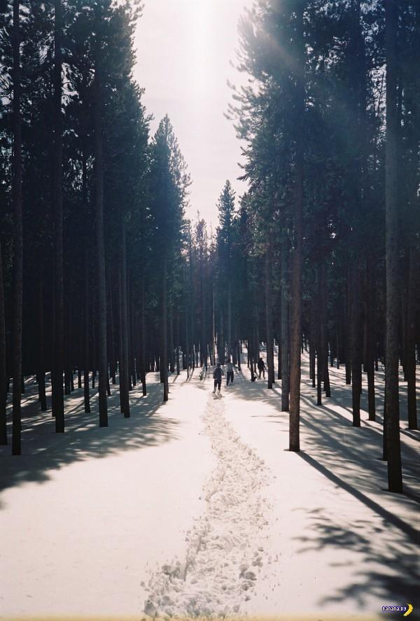 Россыпь красивых фотографий - 65