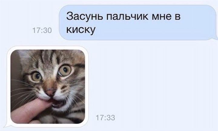 Анекдоты дня 27.01.2015