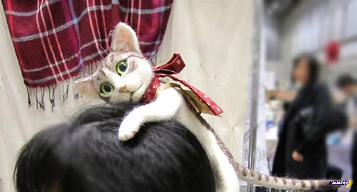 Кот на голове