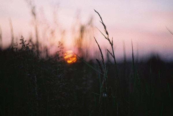 Россыпь красивых фотографий - 66