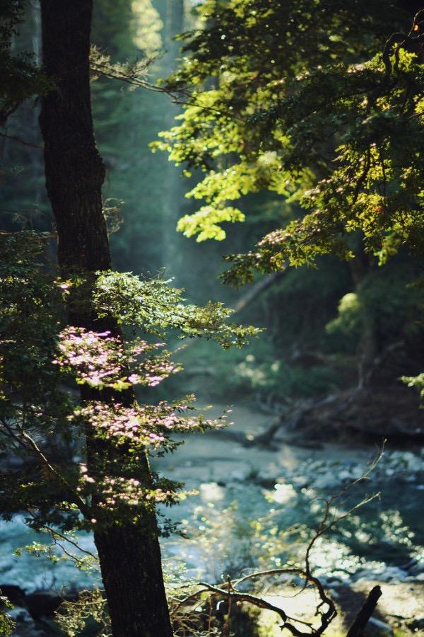 Россыпь красивых фотографий - 70