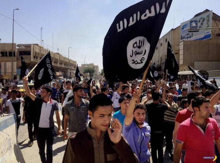 Быль про ИГИЛ в стиле сказки братьев Гримм