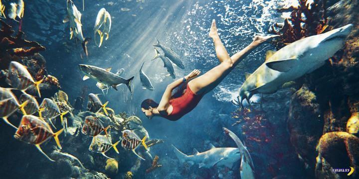 Рианну съела акула для Harper's Bazaar