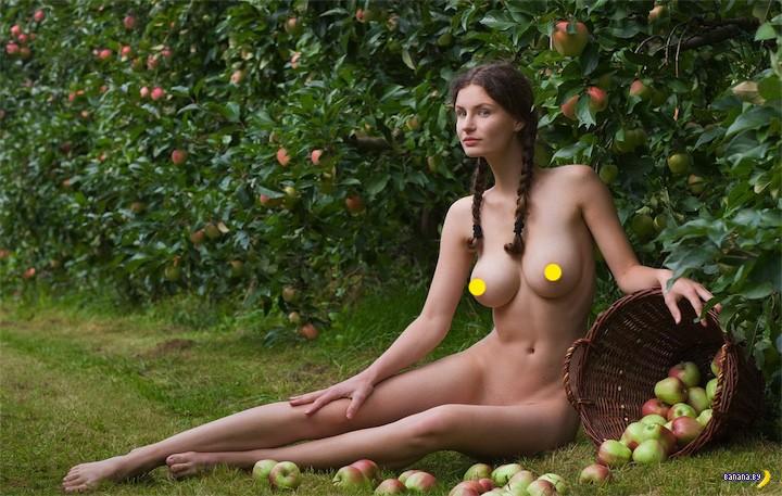 Россельхознадзор подозревает белорусские яблоки