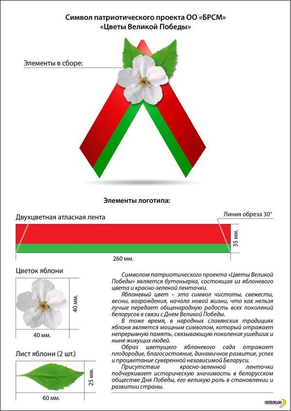 Проект символики к 9 мая от БРСМ