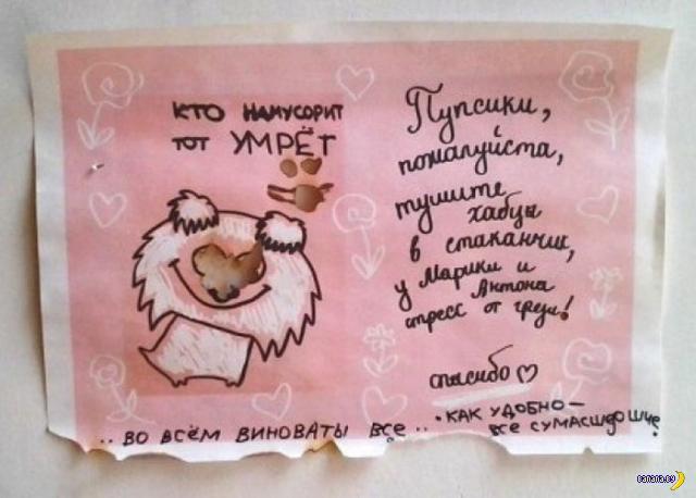 Питерская настенная мудрость