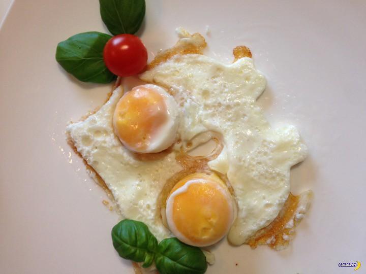 Tinydeal: мудрая сова и два яйца