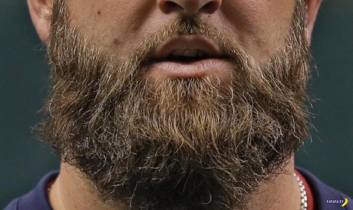 В бороде больше всякого дерьма, чем в туалете
