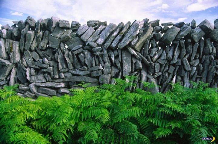 Каменные стены Ирландии