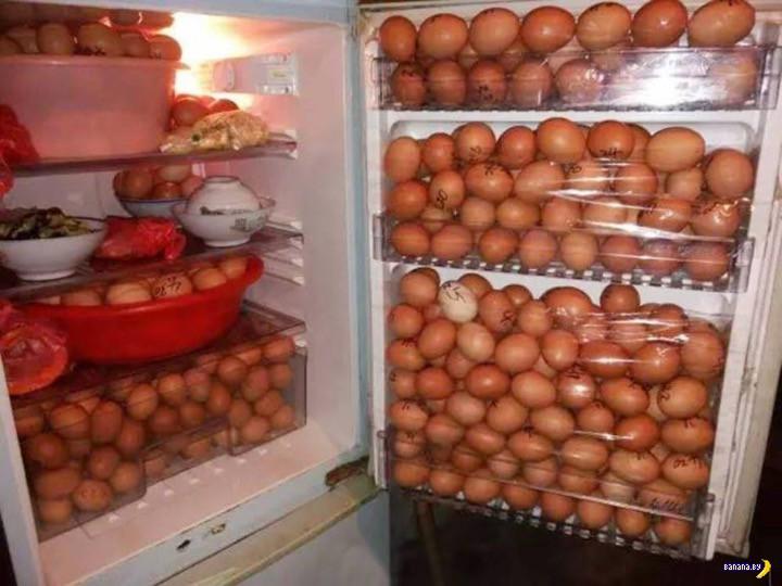 Пойман укравший яйца преступник!